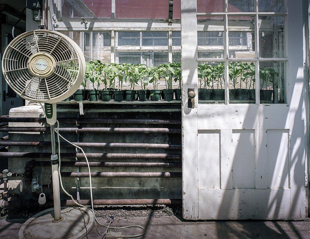 2011-06-10-01-ncl-011.jpg
